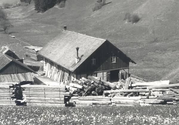 Haus in den Bergen mit viel Holz herum gelagert (schwarzweiß Fotografie)